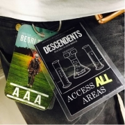 descendents BTX pass 2016